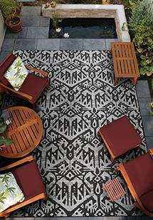 Delphi CS-2378-0768 Indoor-Outdoor Area Rug