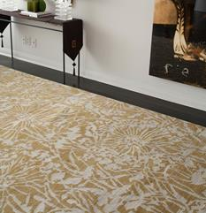 Earth-ER17-Golden Apricot Golden Apricot Room Lifestyle Hand-Knotted Area Rug detail